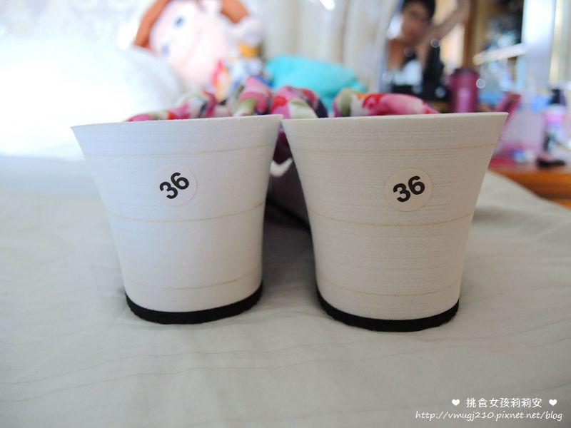 DSCN8581_副本
