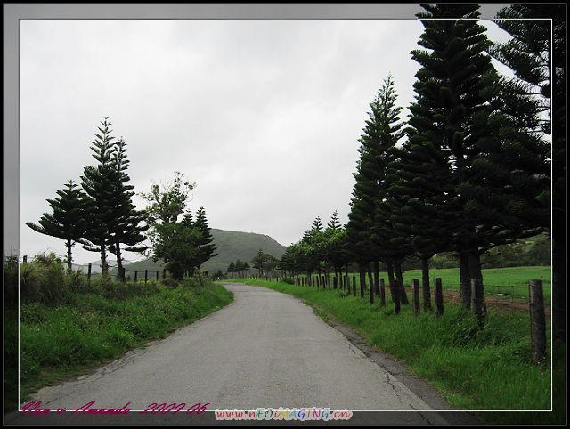IMG_0135.jpg