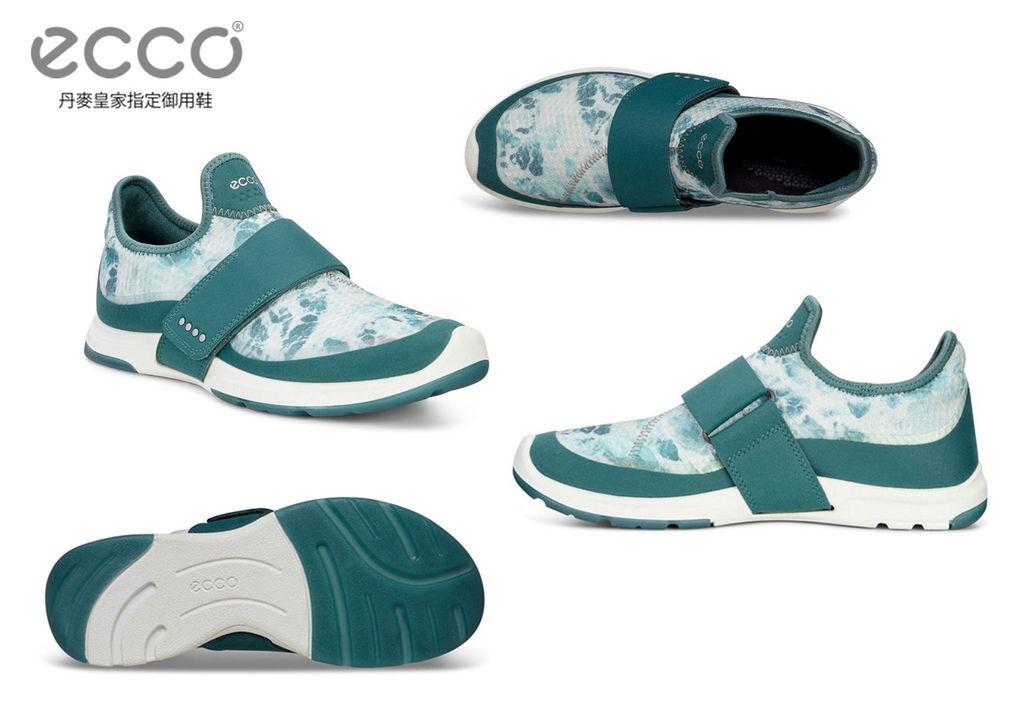 1-ECCO-7 (3).jpg