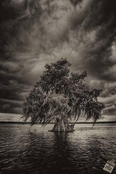 核災陰影下的孤島
