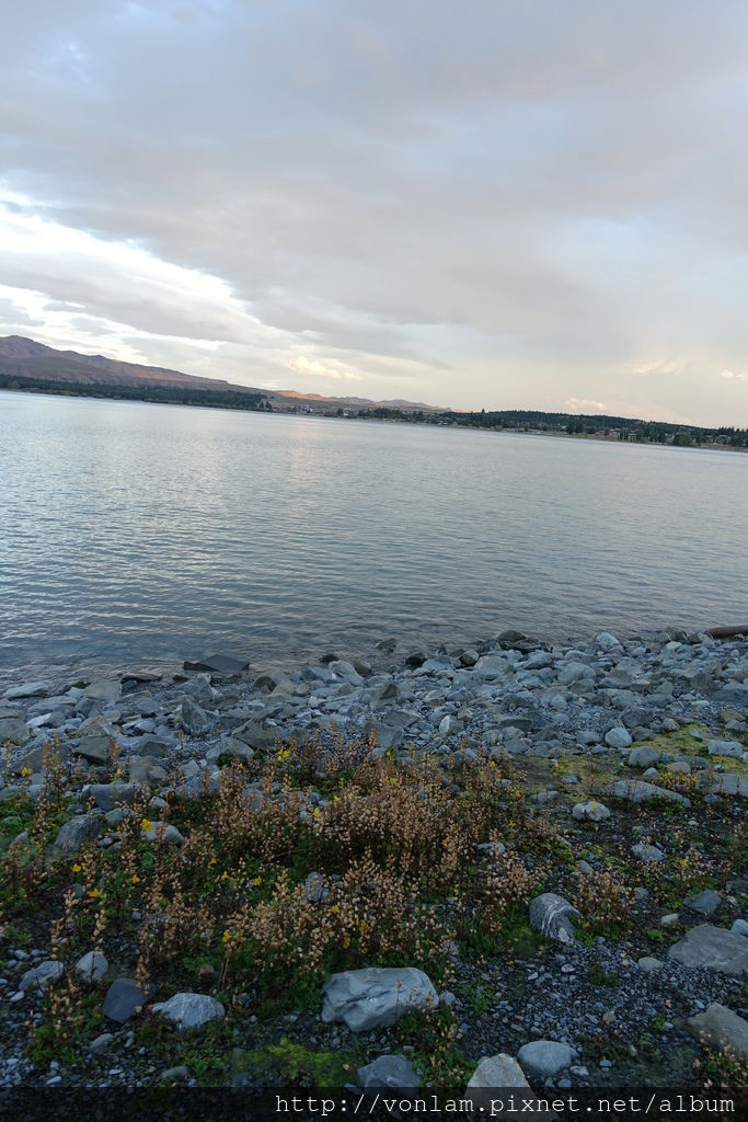 Lake Tekapo_Mount John path1.JPG