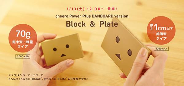 topimage_DANBOARD_plate_block.jpg