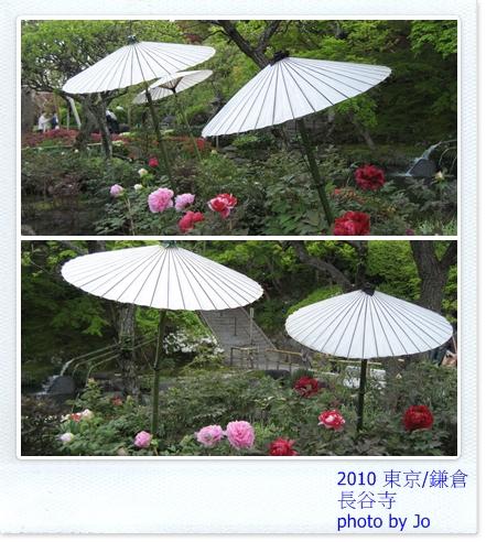 長谷寺 傘下花.jpg
