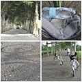 台東 龍田單車 2.JPG