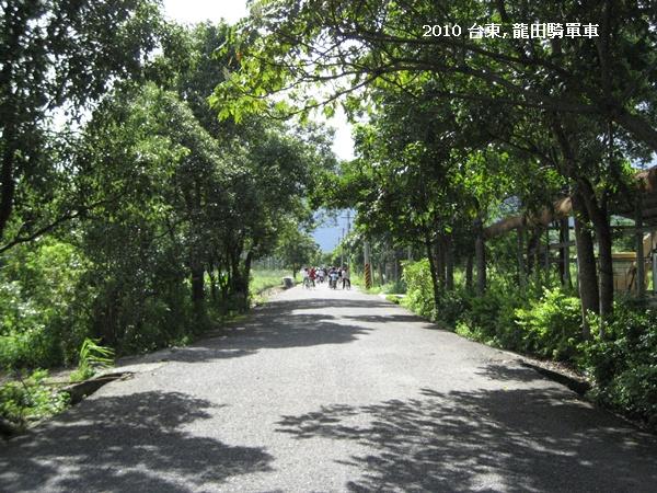台東 龍田單車 1.JPG