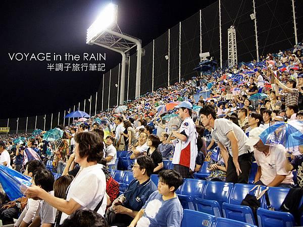 每局結束,燕迷就會揮動雨傘