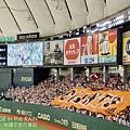 外野球迷拉出大旗
