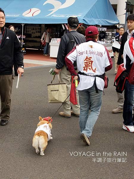 狗狗也要支持樂天