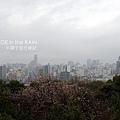 雨中的廣島市