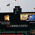 今日戲碼:阪神VS橫濱