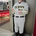 穿阪神球衣的上校
