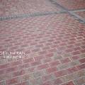 刻滿字的地磚