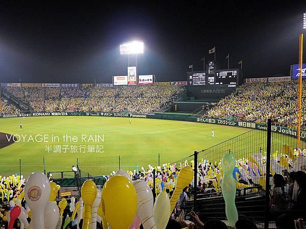 佈滿氣球的觀眾席