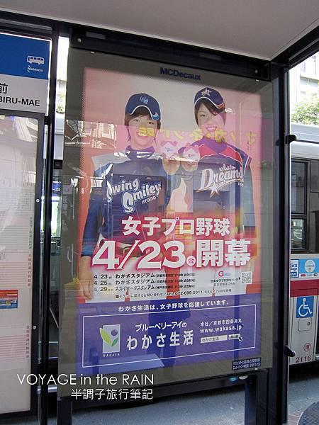 女子職業棒球4/23開幕