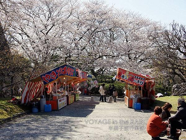 櫻樹下的攤販