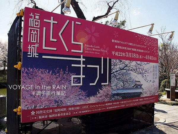 福岡城櫻花祭
