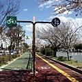 行人和自行車分道