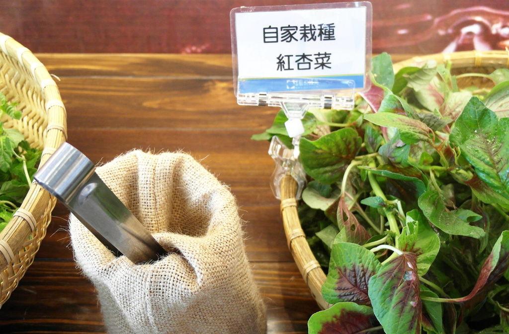 台南_tainan_東東蔬食鍋 (60).JPG