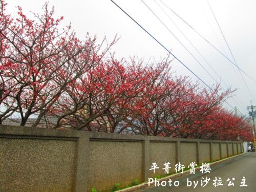 IMG_5919.jpg