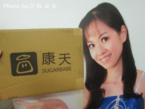 康天養生黑糖:康天-手工黑糖牛軋糖