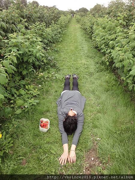 My planking