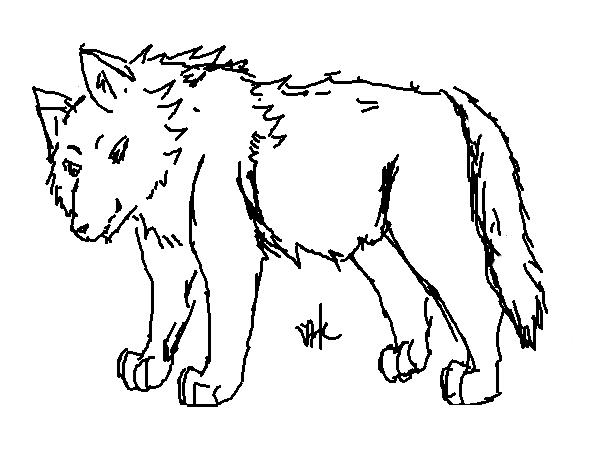好奇小狼.png