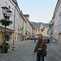 阿爾卑斯鄉村