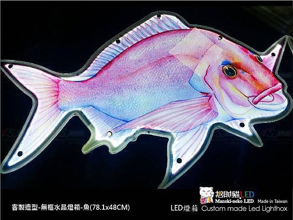 LED C020.jpg