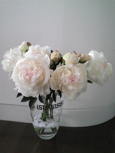 可愛的同事們常送花花給我﹐ 真讓人不好意思