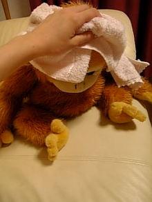 BB剛洗過澡