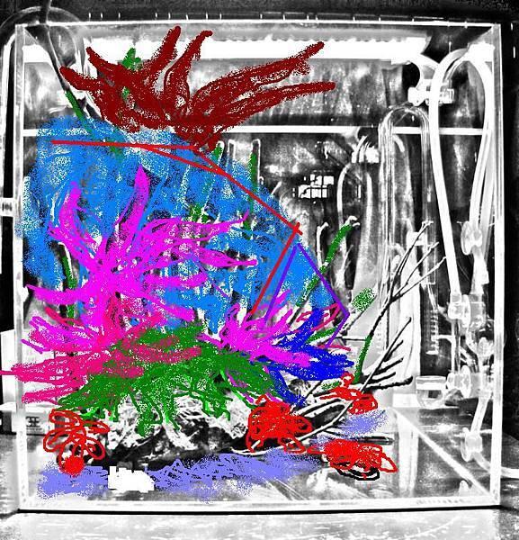 複製 -IMG_0916_nEO_IMG