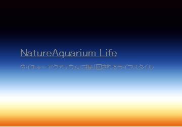 NatureAquarium Life