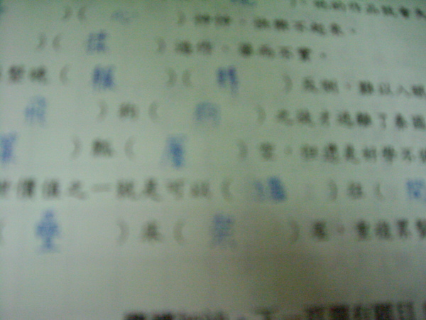 IMG_5591.JPG