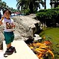 花蓮海洋公園 (3)