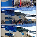 花蓮海洋公園 (40)