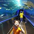 花蓮海洋公園 (35)
