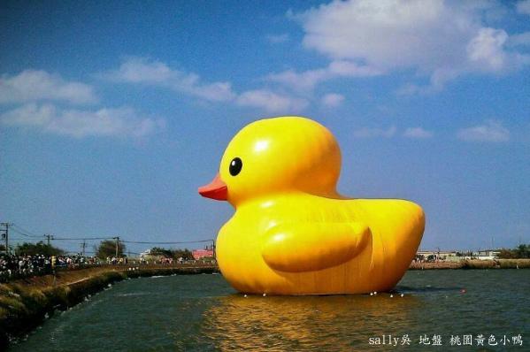黃色小鴨 (38).bmp