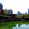 秋紅谷 (9).JPG