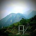 鳳凰谷鳥園.JPG