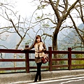 鳳凰谷鳥園 (2).JPG