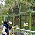 鳳凰谷鳥園 (5).JPG