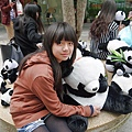 台中貓熊 (27).JPG