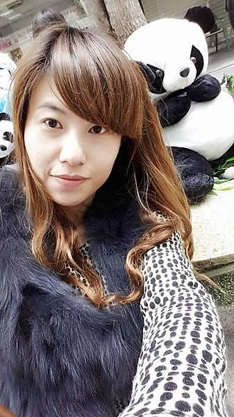 台中貓熊 (28).bmp