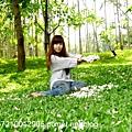 客家大院油桐花 (33).JPG