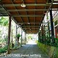 羅望子生態教育農場 (15).JPG