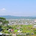 羅望子生態教育農場 (21).JPG