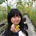優恩蜜觀光果園 (18).JPG