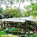 森林鳥花園 (17).JPG