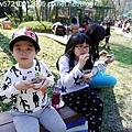 森林鳥花園 (27).JPG