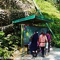 森林鳥花園 (28).JPG